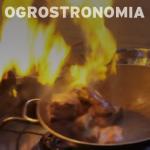 Ogrostronomia
