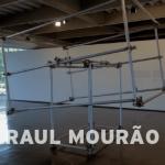 Raul Mourão – Tração Animal (MAM)